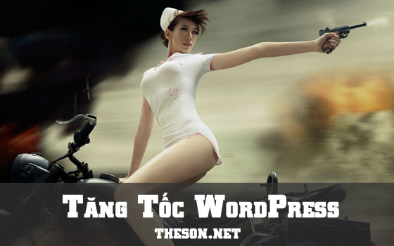 tang-toc-wordpress